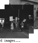 San Francisco Negro American Council Pickets--Matson Dock