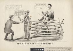 """The nigger"""" in the woodpile"""
