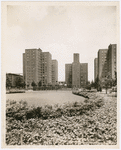 View of the Riverton Houses looking north from the Abraham Lincoln Playground, 1949