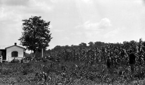 Farm Demonstration work, Russell E. Washington.