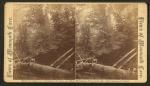 A native, (an African American boy sitting on a log)