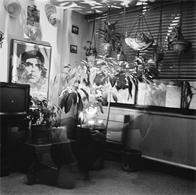 Joe Conzo, Michelangelo Apartments