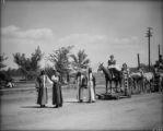 The ten dollar beauty, circus parade