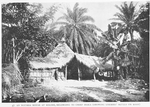 An Ngumba house at Bolobo, belonging to Chief Ibaka [showing enemies skull on roof.]