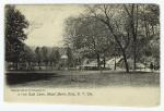 East lawn, Mount Morris Park, N.Y. City