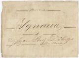Carta y oficio en relación a la fuga y captura de la patrocinada Ygnacia, septiembre de 1881