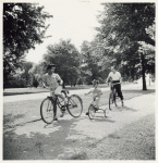 Wartime vacations; Sunday cyclists in East Potomac Park; Washington, D.C