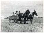 Ben Turner and family in their wagon with mule team. Flint River Farms, Georgia. May 1939