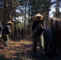 Soldiers on a military exercise at the U.S. Army training facility at Fort McClellan near Anniston, Alabama.
