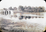 The road leading from the station to the town, Motihari, India, ca. 1906