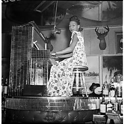 Allyce Brookes wearing floral patterned dress playing mirrored piano in Crawford Grill No. 2 room with deer head and tropical decor