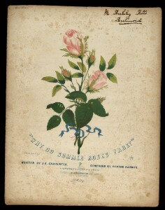 Why do summer roses fade?