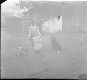 A young boy holding Davis George next to two dogs
