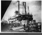 Steamboat John Quill