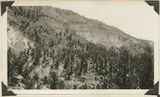 Upper wall of Big Meadow Canyon (on Zion-Mt. Carmel road). Morrison strata, unconsolidated Dakota ? (black band), and coal-bearing Cretaceous. Kane County, Utah, 1930.