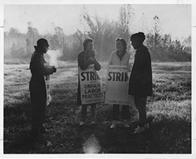 Three female and one male ILGWU members stand in the cold holding strike placards protesting unfair labor practices by the Ottenheimer company