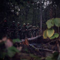 Soldiers crossing a log bridge on a military exercise at the U.S. Army training facility at Fort McClellan near Anniston, Alabama.