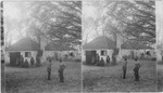 Cabins where slaves were raised for market - the famous Hermitage. Savannah, Georgia
