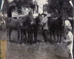 Henry Hammond's colts [and] John Shaw Billings, Redcliffe, S.C., Spring 1903.