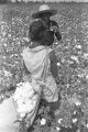 Woman and young girl in the cotton field of Mrs. Minnie B. Guice near Mount Meigs in Montgomery County, Alabama.