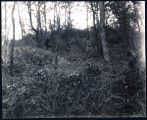 Photographs of Earthworks, possibly near Canoe Place in Southampton