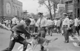 Police dog attacking Walter Gadsden, a student at Parker High School, during a civil rights demonstration in downtown Birmingham, Alabama.