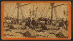 African-American longshore men and bales of cotton on the dock