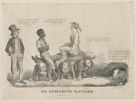 The Democratic platform