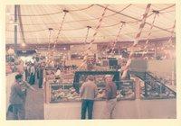 Farm Produce on Display, Danbury Fair