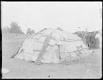 Birchbark hut constructed on the fair grounds at St Louis, Mi 1904
