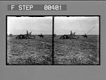 A load of cane on a sugar plantation near New Orleans, La. [Active no. 809 : stereo photonegative.]