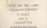Mule and a Mulatto