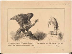 Our national bird as it appeared when handed to James Buchanan, March 4, 1857. The identical bird as it appeared A. D. 1861