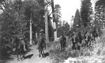 24th Mounted Infantry, Yosemite