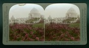 """Acme of Splendor, Hydrangea Beds, Festival Hall and Cascades, Louisiana Purchase Exposition, St. Louis, MO, U.S.A."""