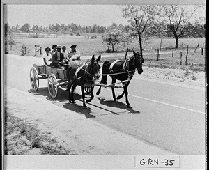Photograph of an African-American family riding in a wagon, Greene County, Georgia, 1941 June