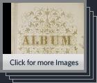 [Album of tintype portraits]