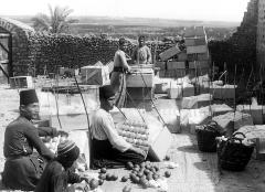 Syria. Jaffa. Packing Oranges for Shipment; Men Dresses in light Suits and Fezes; A Negro Boy