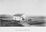 The plantation store