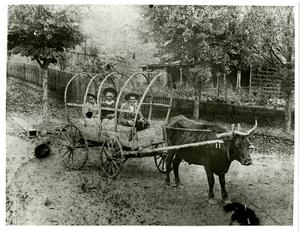 Photograph of Castleberry family, Auraria, Georgia, 1900