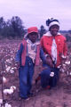 Children in cotton