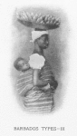 Barbados types - III