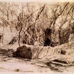 Green House & The Slave Hospital, St. Simon's Island, Glynn County