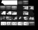 Set of negatives by Clinton Wright including car wash, birthday party, Jean Murray and Sharn, Elder Ray, and Aunt Dott's welcome home, 1965