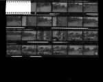 Set of negatives by Clinton Wright including track meet at Las Vegas High School (May 1966), and Doolittle baseball tournament, 1966